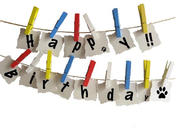 Birthday cardブログ用のコピー