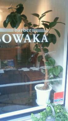 SOWAKA BLOG.-201109011552000.jpg
