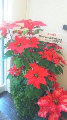 sowaka blog.-111204_120926_ed_ed_ed.jpg