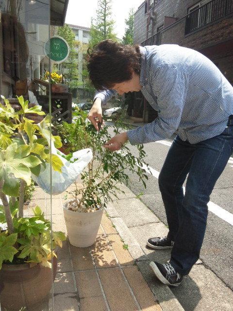 sowaka blog.-120425_113932.jpg