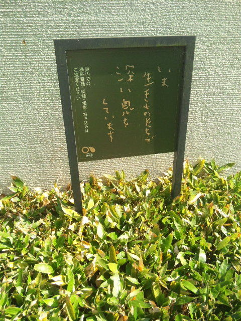 sowaka blog.-120514_153430.jpg