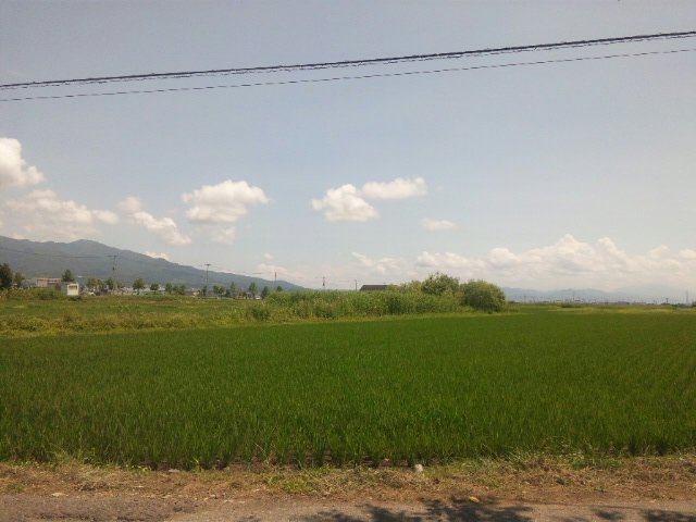 sowaka blog.-120709_125219_ed.jpg