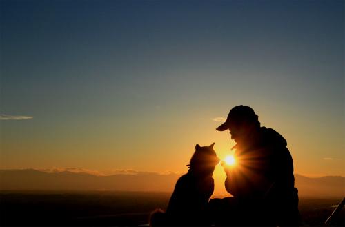 はなびとおとーちゃんと夕陽