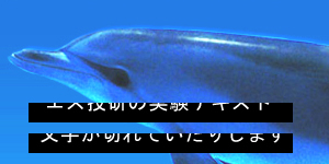 20121201_swiffy.jpg