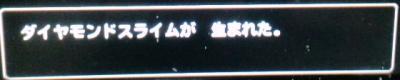 CA3G0225_convert_20120609194046.jpg