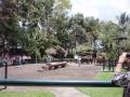 ⑯象のショー