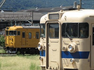 2012_0825_110805-IMG_9304 黄色い鉄仮面とセキC-42
