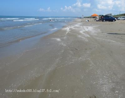 きめの細かいサラサラの砂です