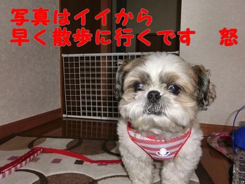 001-20120605-102131.jpg