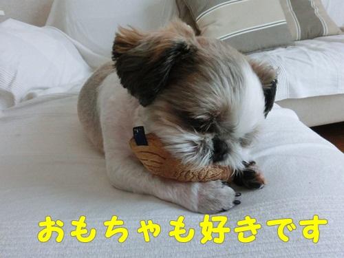 001-20120721-140210.jpg