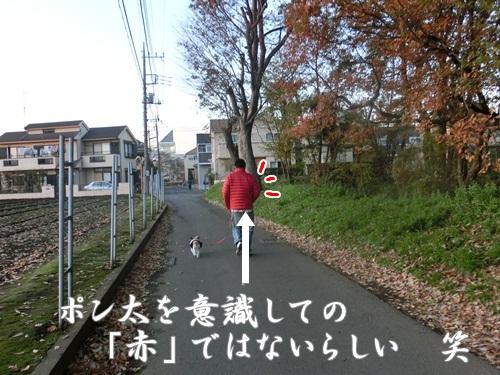 001-20121202-105449.jpg