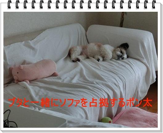 002-20120515-144333.jpg