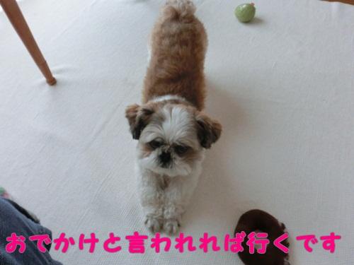 002-20120608-120119.jpg