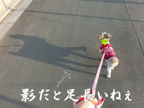 002-20120718-154441.jpg