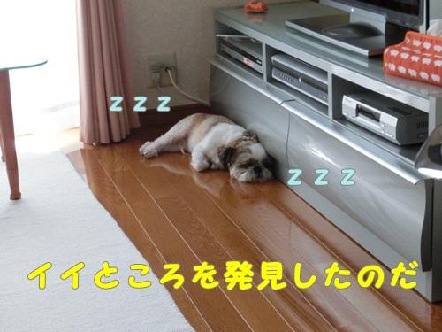 002-20120807-121127.jpg