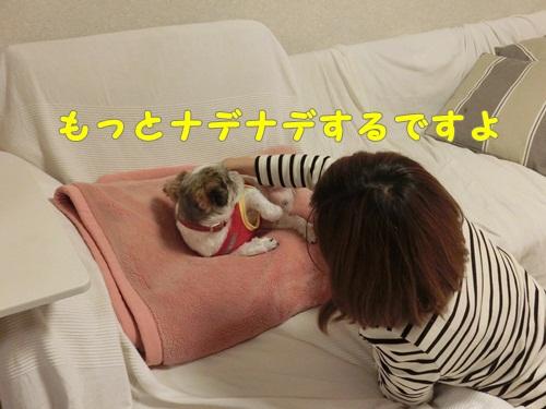 002-20121028-001810.jpg