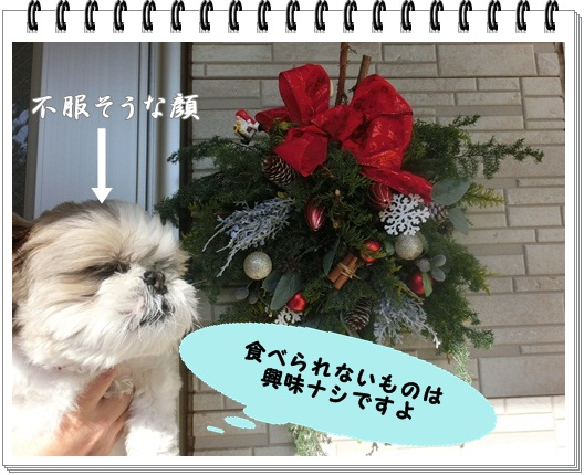 002-20121127-212642.jpg