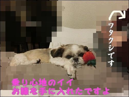 002-20121217-102547.jpg