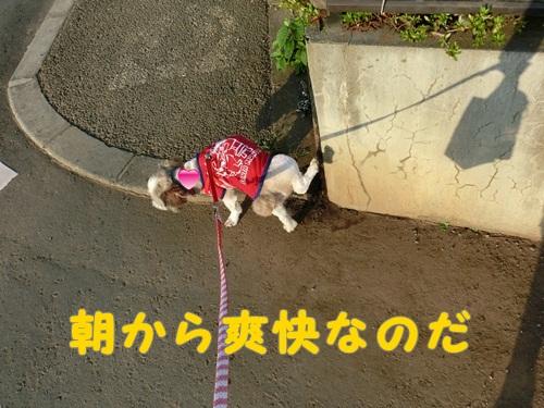 003-20120718-154441.jpg