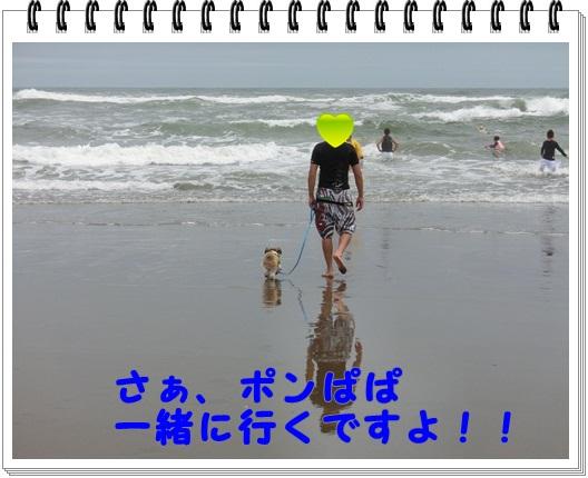 008-20120705-222806.jpg