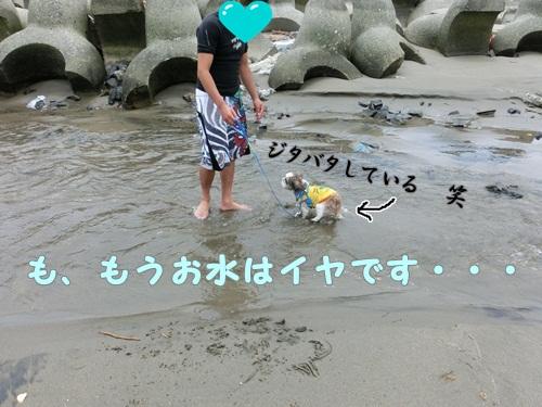 011-20120703-111653.jpg