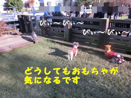 019-20121104-201834.jpg