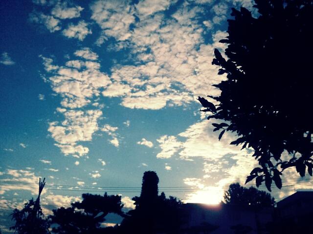 PicsArt_1345537620731.jpg