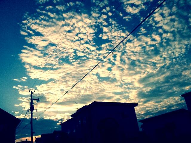 PicsArt_1345539943559.jpg
