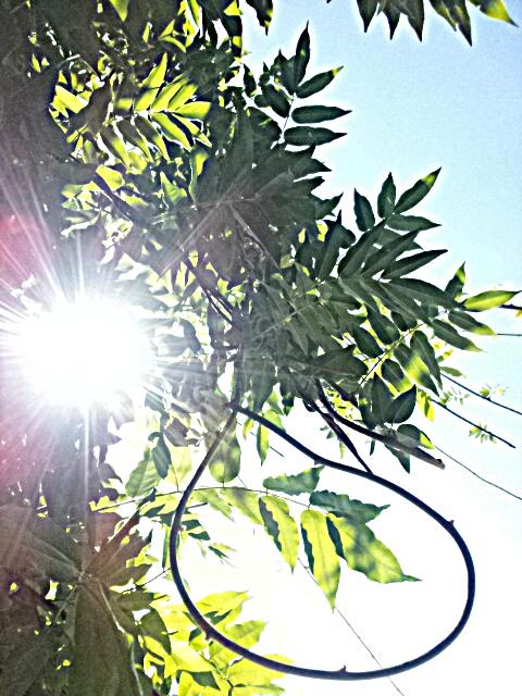 PicsArt_1347065044094.jpg