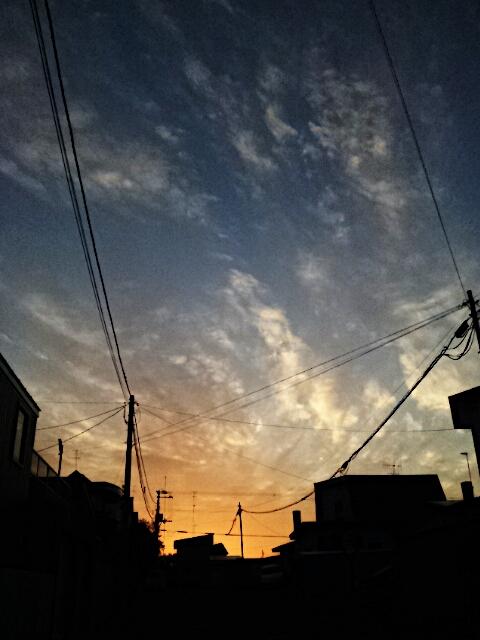 PicsArt_1348000006992.jpg
