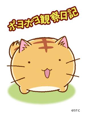 ポヨポヨ観察日記(P001)