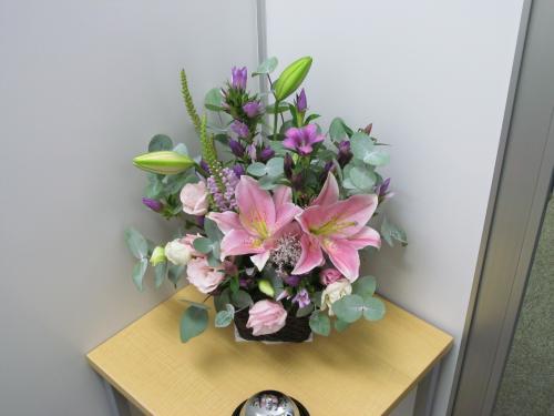 お花 241001