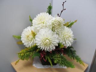 お花 241217_convert_20121217112947