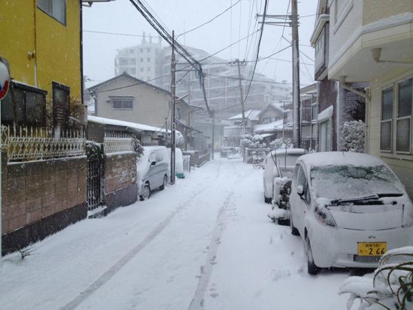 茅ヶ崎雪景色140208a