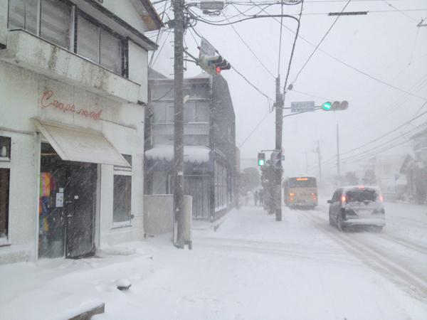 茅ヶ崎雪景色140208f