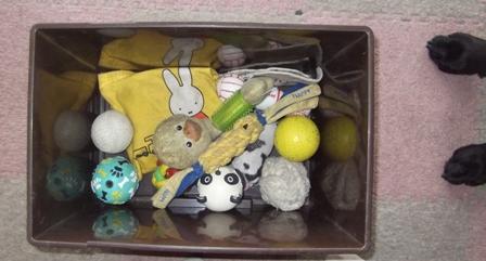ぼくのおもちゃ箱