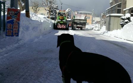 排雪作業かぁ~