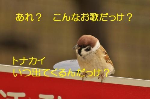 004_20121223183755.jpg