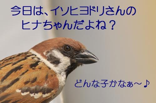 010_20120612214930.jpg