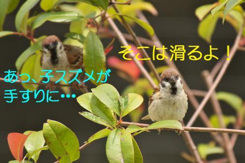 010_20120711222459.jpg