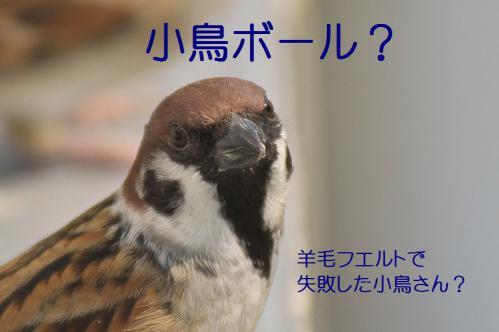 010_20121031214757.jpg