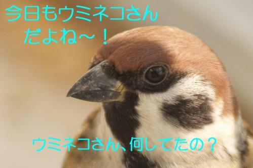 010_20121125192032.jpg