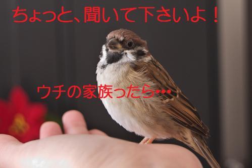 010_20121209222743.jpg