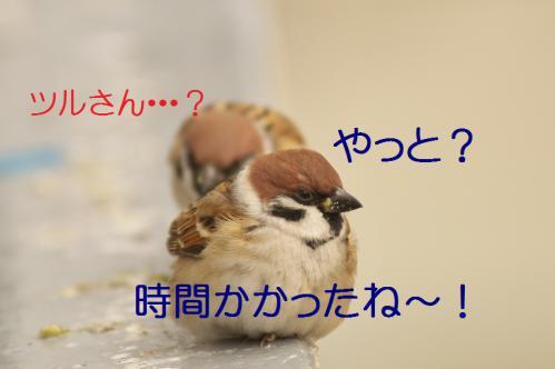010_20121215195921.jpg