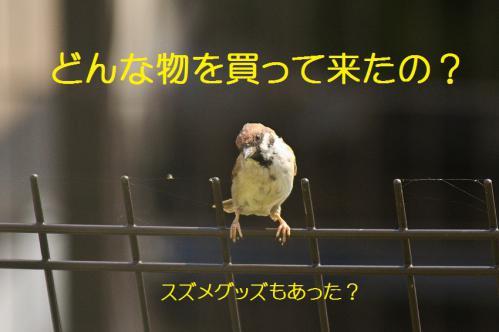 011_20120930203421.jpg