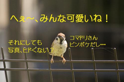 016_20120930203540.jpg