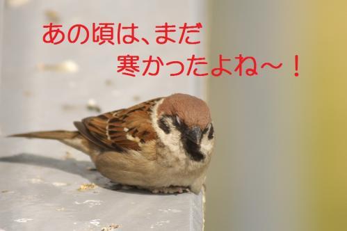 020_20120426195238.jpg