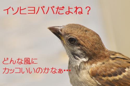020_20120613233501.jpg