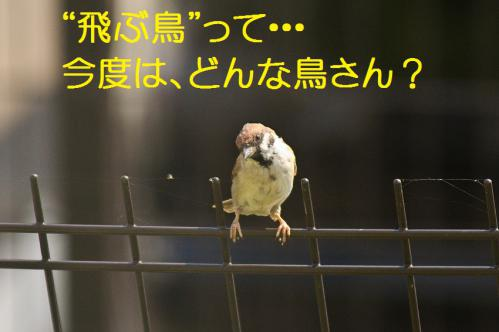 020_20121009191351.jpg
