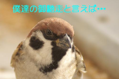 020_20121125192034.jpg